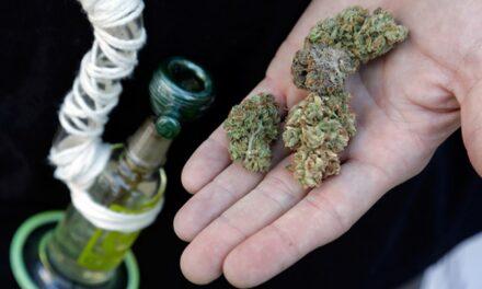 Se aprobó el uso de la marihuana medicinal