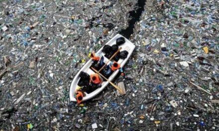 En el Pacífico Norte flota una isla de desechos plásticos