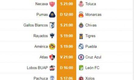 Jornada 10 del fútbol mexicano