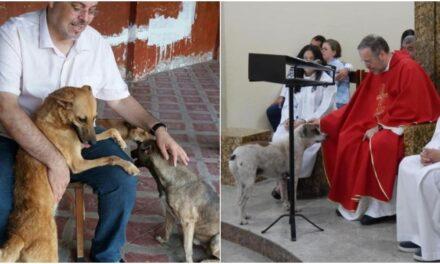 Sacerdote promueve la adopción canina durante celebración eucarística