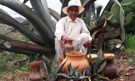 Con agave se transformará el campo en la Mixteca