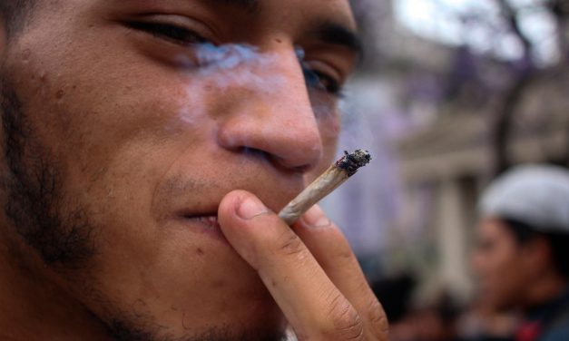#Opinión Marihuana legal