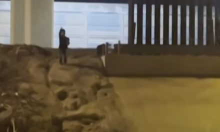 Niño suplica que no lo abandonen, tras cruzar la frontera