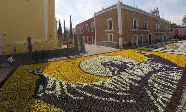 ¡Confirmado! Se colocará el tapete monumental de Flores en Atlixco