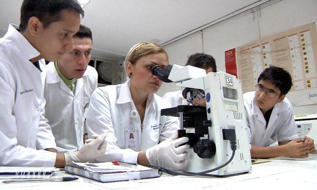 Opinión  Mis grandes privilegios como investigador científico