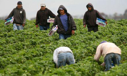 Migrantes mexicanos vuelven a romper récord en remesas